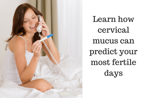 Learn how cervical mucus can predict your most fertile days