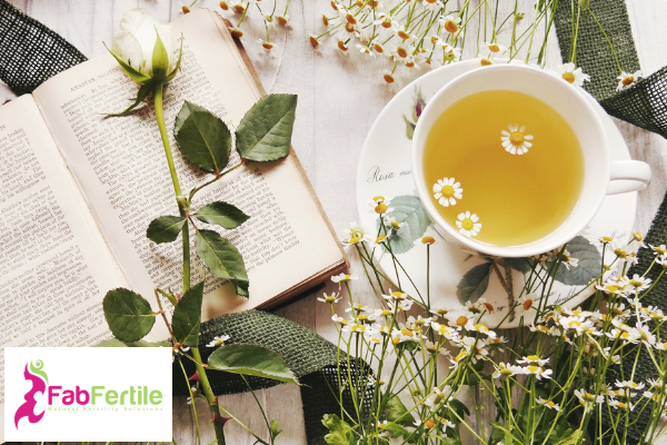 Fertility Teas and Herbs  – Could They Be Harming Your Fertility?